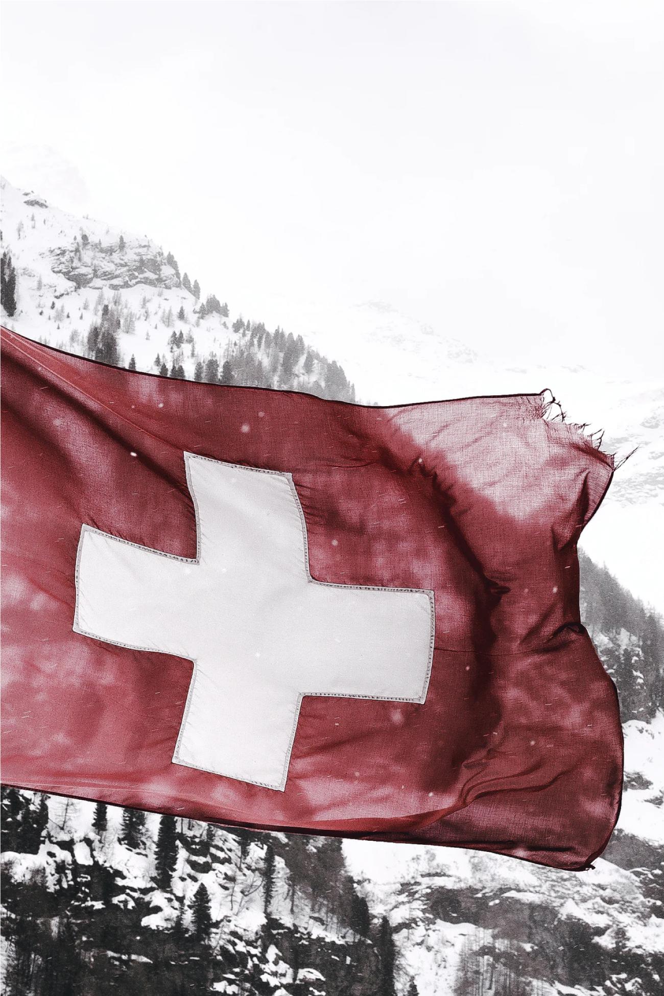 Defimedica_Flag